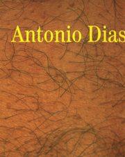 António Dias Trabalhos 1965-1999