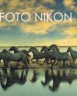 Foto Nikon