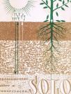 Apontamentos sôbre a conservação e cultivo do solo