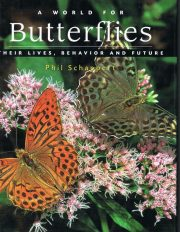 A World for Butterflies – Their Lives, Behavior and Future